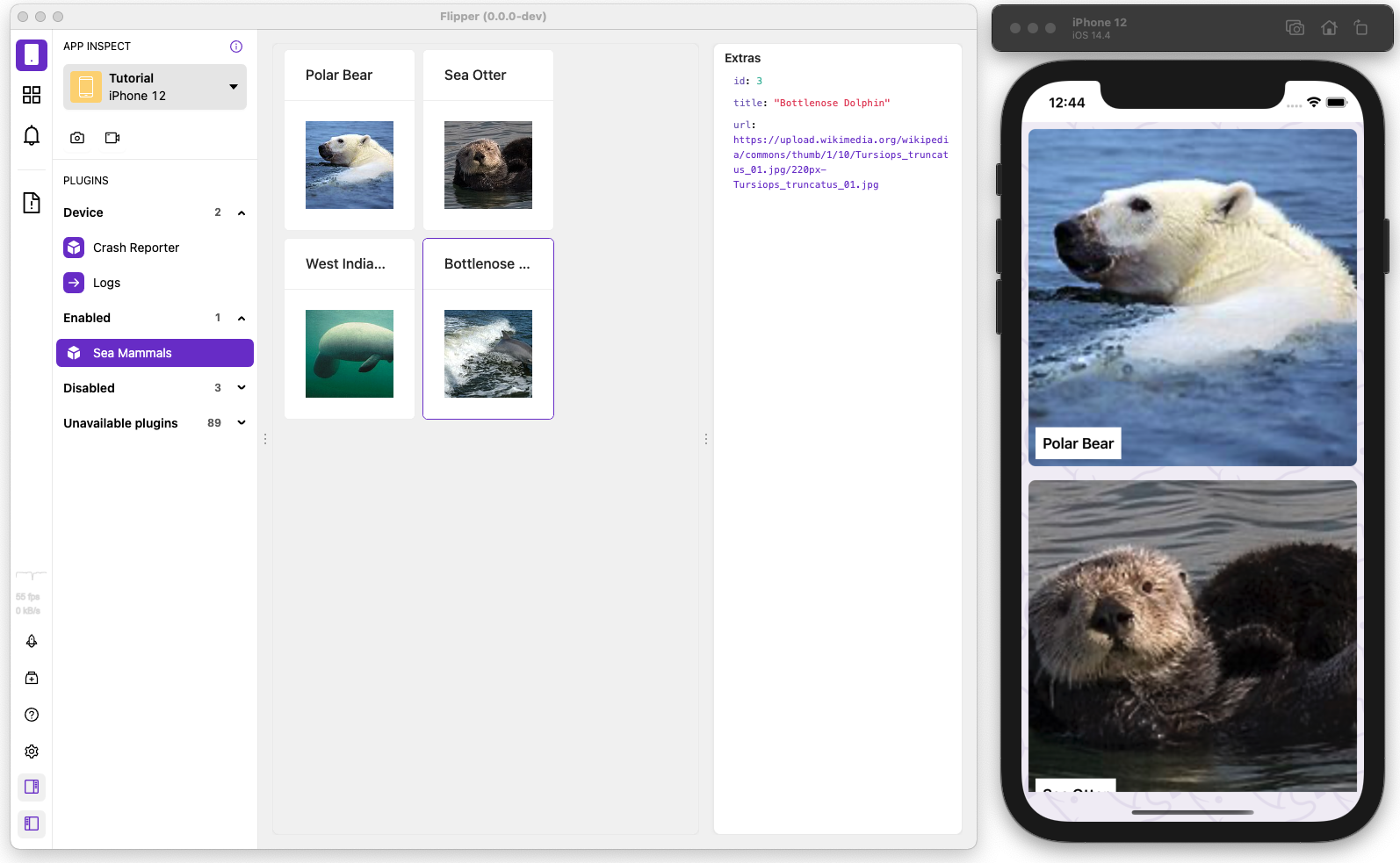 Custom cards UI for our sea mammals plugin